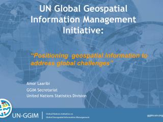UN Global Geospatial Information Management  Initiative: