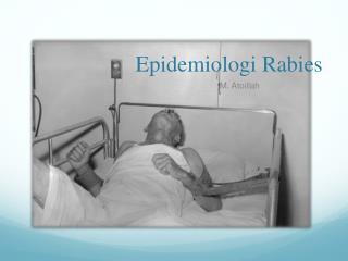 Epidemiologi  Rabies