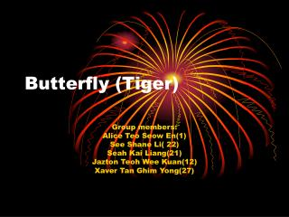 Butterfly (Tiger)
