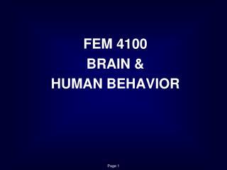 FEM 4100 BRAIN &  HUMAN BEHAVIOR