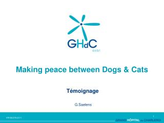 Making peace between Dogs & Cats