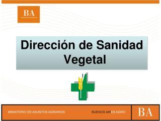 Dirección de Sanidad Vegetal