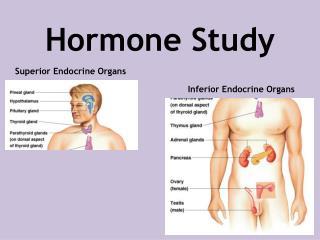 Hormone Study