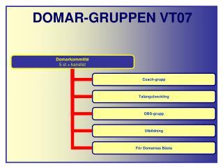 DOMAR-GRUPPEN VT07