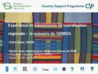 Expérience et mécanismes de coordination régionale :  le scénario du GEMGG  Chika Ukwe, ONUDI