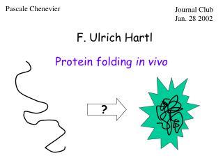 F. Ulrich Hartl