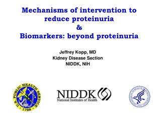 Mechanisms of intervention to reduce proteinuria  Biomarkers: beyond proteinuria