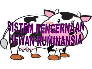 SISTEM PENCERNAAN HEWAN RUMINANSIA