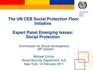 The UN CEB Social Protection Floor Initiative Expert Panel Emerging Issues: Social Protection