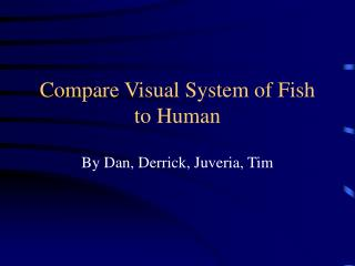 Compare Visual System of Fish to Human