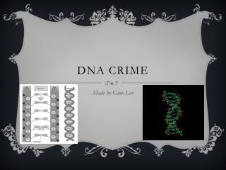 DNA Crime