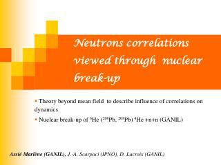 Neutrons correlations viewed through  nuclear break-up