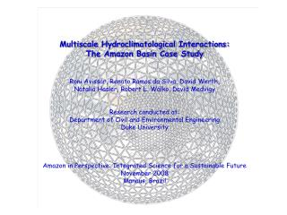 Multiscale Hydroclimatological  Interactions: The Amazon Basin Case Study