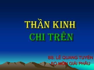 TH?N KINH CHI TR�N