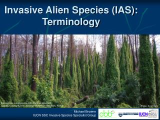 Invasive Alien Species (IAS): Terminology