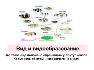 Вид и видообразование