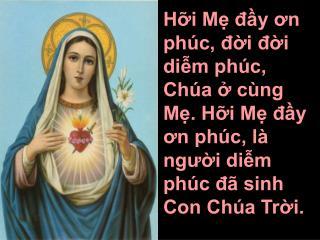 2. Mẹ đầy dư ơn thiêng cao quý đoàn con kính chào. Là niềm tin yên vui chan chứa suối ơn dạt dào.