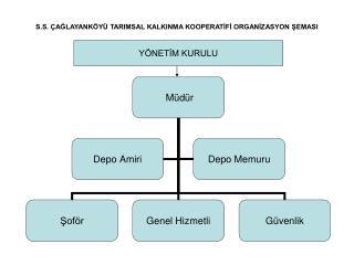 S.S. ÇAĞLAYANKÖYÜ TARIMSAL KALKINMA KOOPERATİFİ ORGANİZASYON ŞEMASI