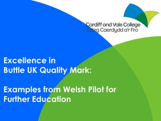 Excellence in  Buttle  UK Quality Mark: Examples from Welsh Pilot for Further Education