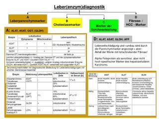 Leber(enzym)diagnostik