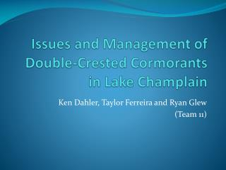 Issues and Management of Double-Crested Cormorants  in Lake Champlain