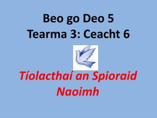 Beo go Deo 5 Tearma 3: Ceacht 6
