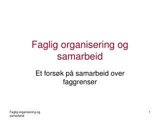 Faglig organisering og samarbeid