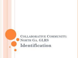 Collaborative Community: North Ga.  GLRS