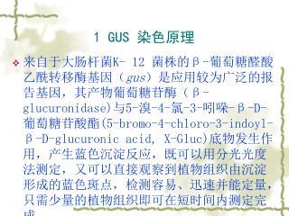 1 GUS  染色原理