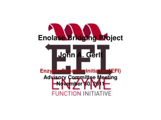 Enolase Bridging Project John A. Gerlt Enzyme Function Initiative (EFI) Advisory Committee Meeting