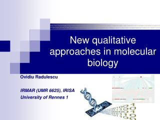 New qualitative approaches in molecular biology