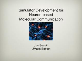 Simulator Development for Neuron-based Molecular Communication