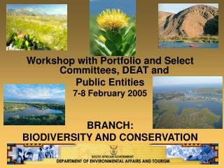 Workshop with Portfolio and Select Committees, DEAT and  Public Entities 7-8 February 2005