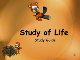 Study of Life Study Guide