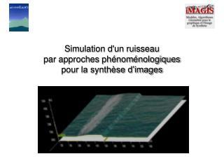 Simulation d'un ruisseau  par approches phénoménologiques  pour la synthèse d'images