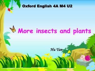 Oxford English 4A M4 U2
