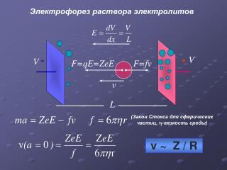 Электрофорез раствора электролитов