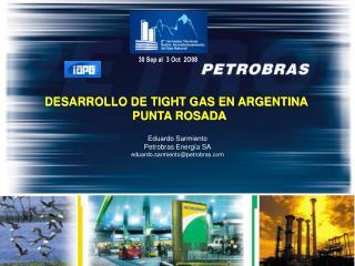 DESARROLLO DE TIGHT GAS EN ARGENTINA   PUNTA ROSADA Eduardo Sarmiento Petrobras Energía SA