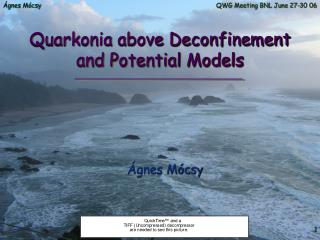Quarkonia above Deconfinement and Potential Models