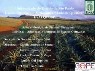 """Universidade do Estado de São Paulo Escola Superior de Agricultura """" Luiz de Queiroz""""  ESALQ- USP"""