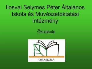 Ilosvai Selymes Péter Általános Iskola és Művészetoktatási Intézmény