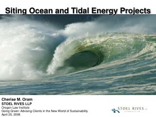 Siting Ocean and Tidal Energy Projects