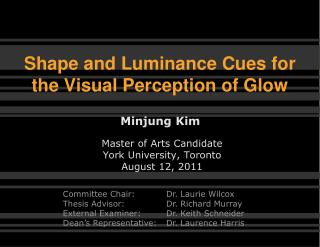 Shape and Luminance Cues for  the Visual Perception of Glow