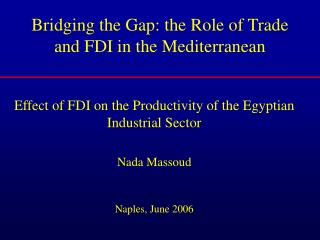 Bridging the Gap: the Role of Trade and FDI in the Mediterranean