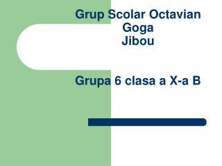 Grup Scolar Octavian Goga  Jibou Grupa 6 clasa a X-a B