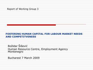 Božidar Šišević Human Resource Centre, Employment  Agency Montenegro Bucharest 7 March  2009