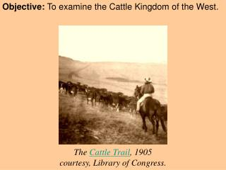 Objective:  To examine the Cattle Kingdom of the West.