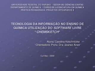 Aluna: Carolina Koschnitzke Orientadora: Profa. Dra. Joanez Aires Curitiba - 2009