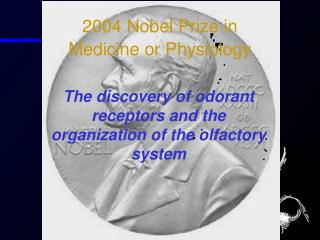 2004 Nobel Prize in  Medicine or Physiology