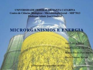 UNIVERSIDADE FEDERAL DE SANTA CATARINA Centro de Ci ncias Biol gicas - Microbiologia Geral   MIP 7013 Professor Admir Jo